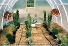 Systemy nawadniania gruntu szklarni