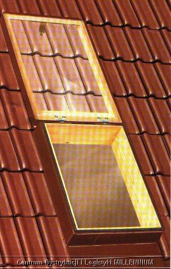 włazy - świetliki dachowe